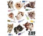 Наклейка IDESIGN CAT 751L