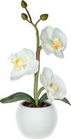 Светильник декоративный Старт Орхидея белая, 295877 фото