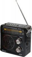 Радио Ritmix RPR-202 Black