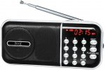 Радиоприемник MAX MR-321 Silver/Black (30052)