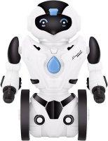 Балансирующий робот SPL BR1 (IG300)