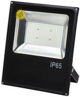 Светодиодный прожектор Glanzen FAD-0010-100