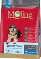 Сухой корм Molina для щенков крупных пород, 3 кг (650906)