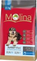 Сухой корм Molina для щенков крупных пород, 15 кг (650913)