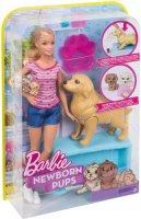 Игровой набор Barbie Кукла и собака с новорожденными щенками (FBN17)