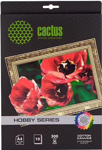 Холст Cactus