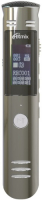 RITMIX RR-190 4GB