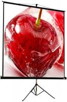 Экран для видеопроектора ViewScreen Clamp Pro 4:3 MW (TCP-1108) фото