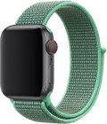 Ремешок TFN Nylon Band для Apple Watch 38/40мм, мятный зеленый (TFN-WA-AWNB40C34)