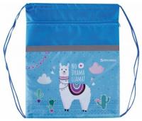 brauberg сумка для обуви llama 229177 бирюзовый Сумка для обуви Brauberg Lama, 49х41 см (229177)