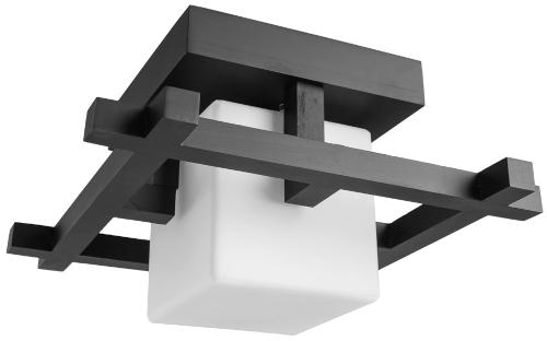 Светильник потолочный Arte Lamp Woods (A8252PL-1CK)