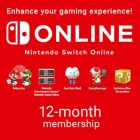 Подписка Nintendo Switch Online 365 Days Membership