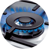 Газовая варочная панель HANSA BHGI63112035